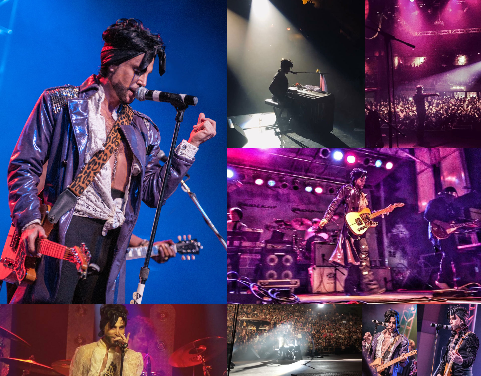Marshall Charloff and The Purple XPeRIeNCE - Prince Tribute Band